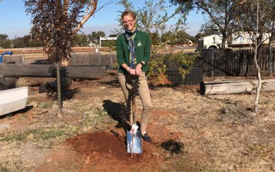 "First tree planted on the ""new Newell"" at Grong Grong"