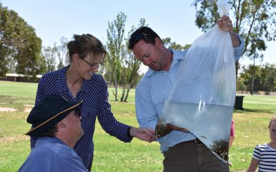 Fish habitat funding available for Cootamundra electorate