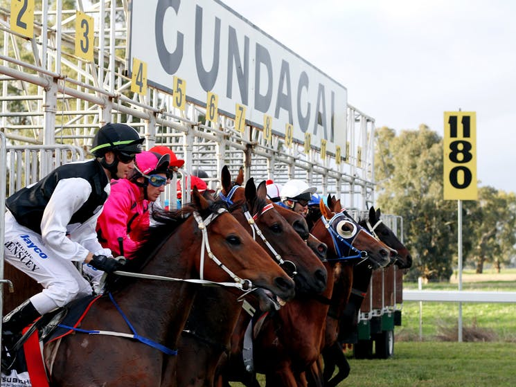 Country racing price purses gallop ahead ready to bring tourism dollars in