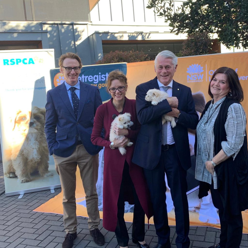 Adopt not shop on International Dog Day | Steph Cooke MP
