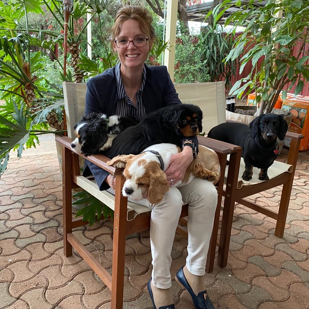 Steph Cooke sits on a chair with three king charles cavaliers on her lap. A Dachshund sits on a chair next to her. She smiles at the camera.